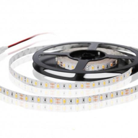 Taśma LED 300 SMD 5630 19,2W/m IP20 12V